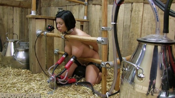 Cory - Cory milked on the Sybian (2018/HuCows.com/FullHD)